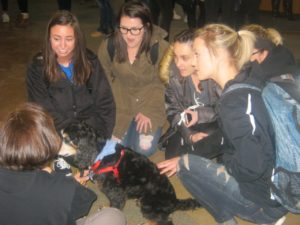 A group of students learn about therapy dogs while petting one of them.