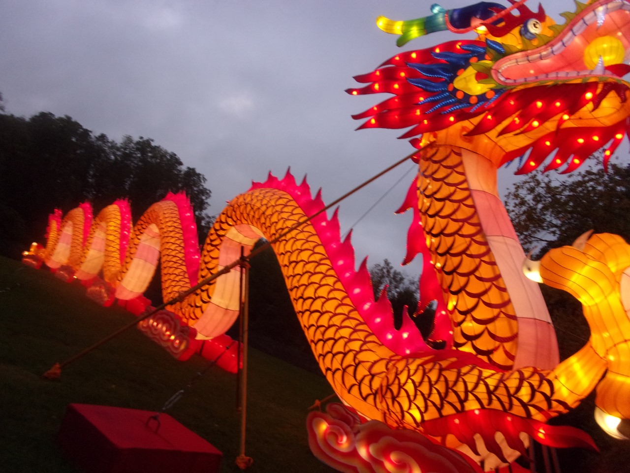 Chinese lights shine at the boerner botanical gardens - China lights boerner botanical gardens ...