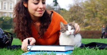 Pets for College Students – from Costs to Company